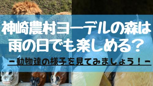 【峰山高原】神崎農村ヨーデルの森は「雨の日」でも楽しめるのか? | 園内の様子をご紹介